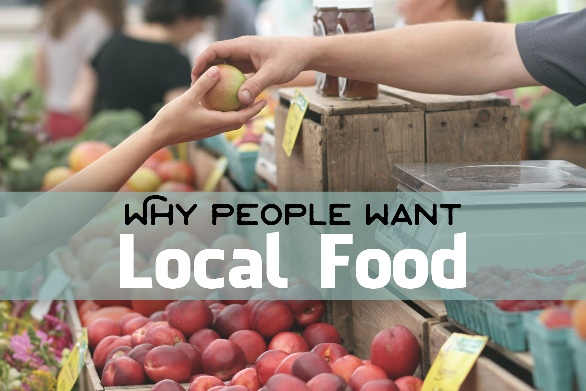 Locally Sourced Food Can Increase Restaurant Sales