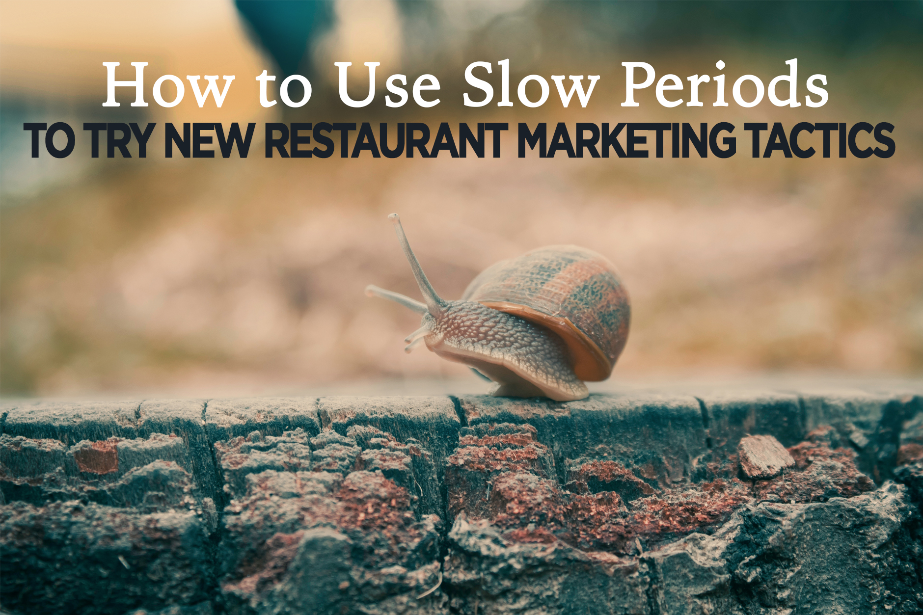 Restaurant Marketing Ideas:  Leveraging Slow Periods