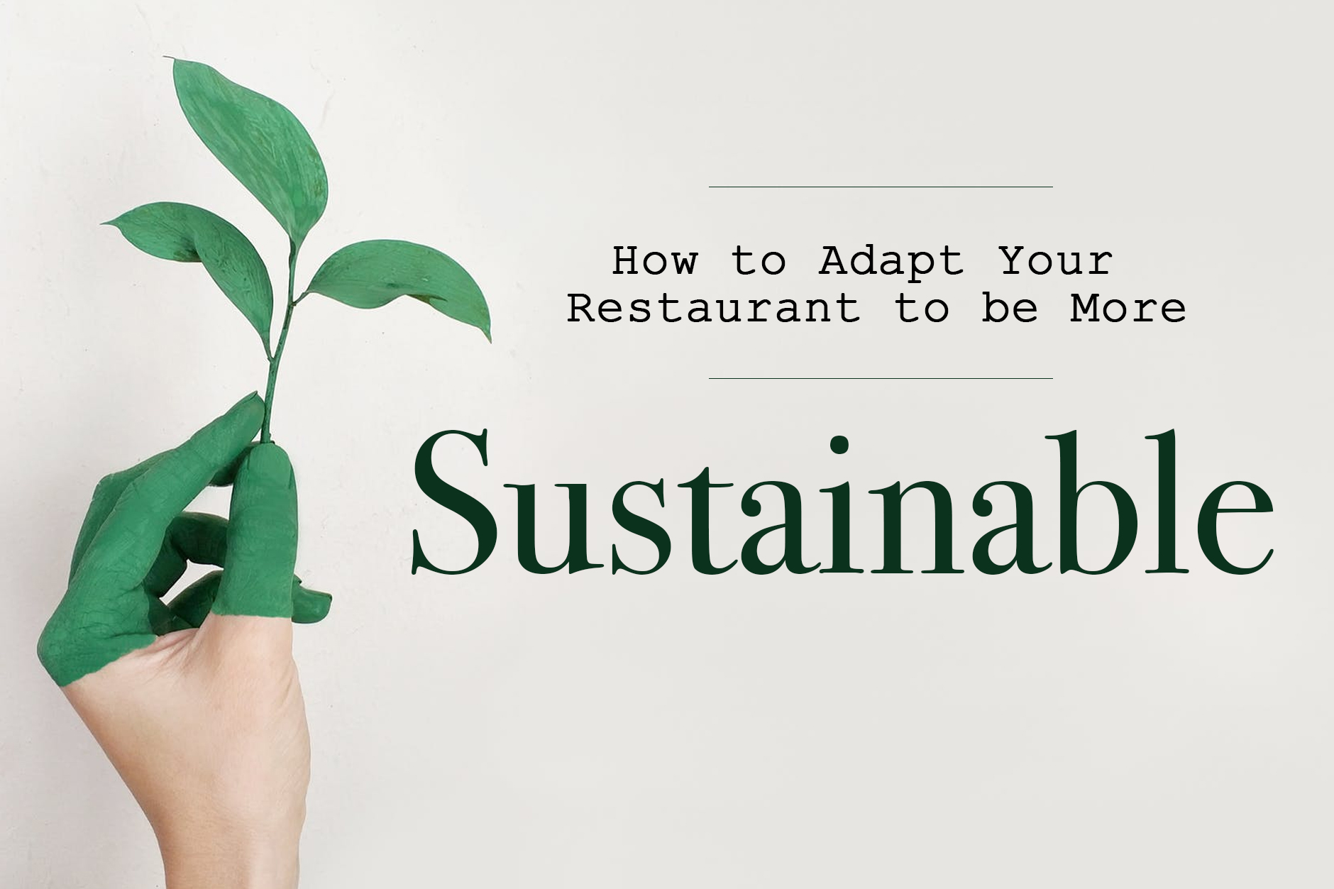 Sustainable Restaurants: Adapt To Be More Sustainable